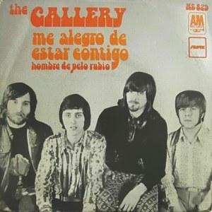 Gallery - HispavoxHS 829