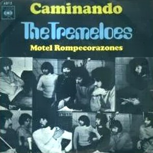 Tremeloes, The
