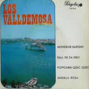 Valldemosa, Los - Pérgola10155