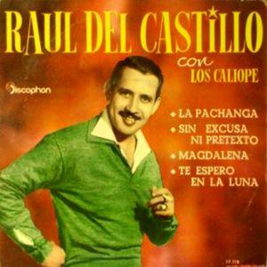 Del Castillo, Raúl