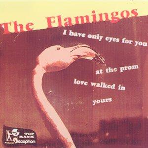 Flamingos, The