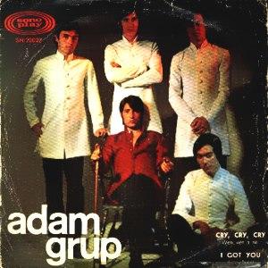 Adam Grup - SonoplaySN-20027