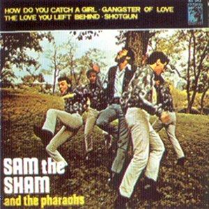Sam The Sham And The Pharaohs - MGM63.542