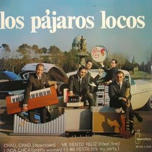 Pájaros Locos, Los